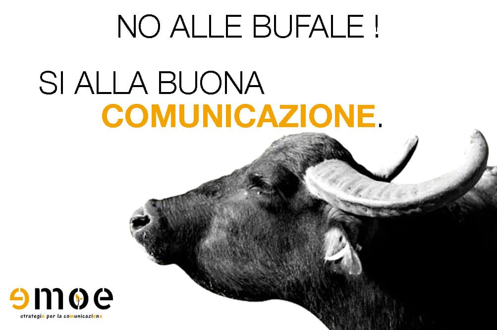 Bufale 3.0, la rovina della comunicazione Web | Emoe