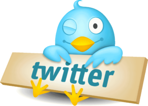 Pubblicità su Twitter: Come funziona Twitter Ads? | Emoe