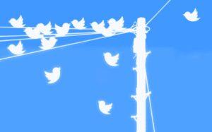 Come funziona Twitter, cos'è e come utilizzarlo per il proprio brand   Emoe