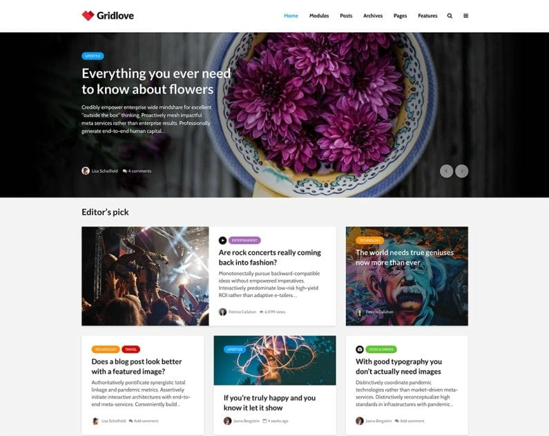 tema WordPress per magazine