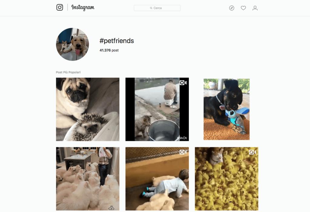Hashtag - community #petfriends | Emoe